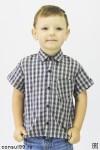 Рубашка детская в клетку,  короткий рукав, шотландка