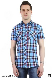Рубашка мужская в клетку, короткий рукав, шотландка, модель 30, клетка 1