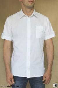Рубашка мужская белая короткий рукав / белые пуговицы